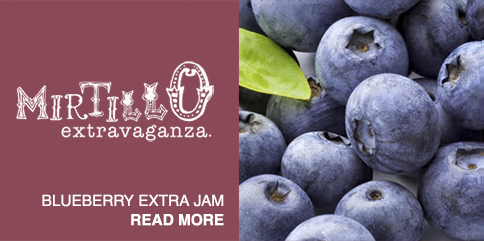Blueberry extra jam